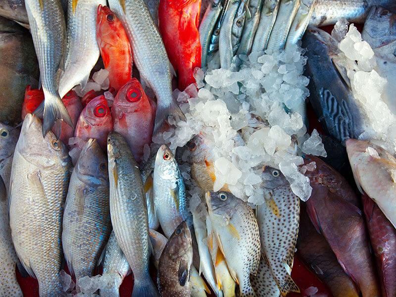 海鮮 | 如何安全解凍海鮮?