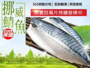 挪威薄鹽鯖魚-熱賣百萬片持續發燒中🔥