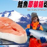 馬姐10號特選厚切鮭魚片