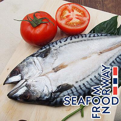 巨霸比臉大挪威薄鹽鯖魚