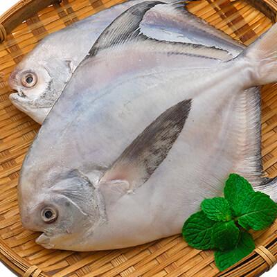 白鯧魚 350g(免運)