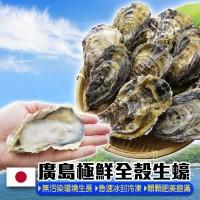 烤肉食材 - 全殼牡蠣痛風組