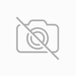 艋舺雞排-任選組 240g